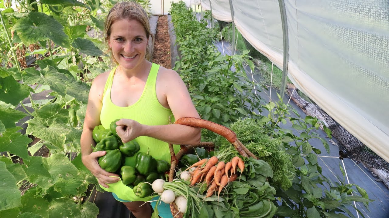 Family of 5 Lives Off FRONT YARD GARDEN | Growing 45# Abundance during Food Shortages