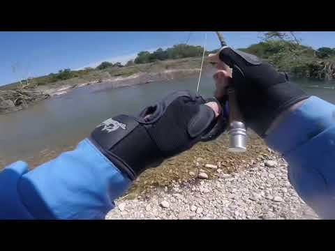 Fly Fishing The Llano River For Guadalupe Bass