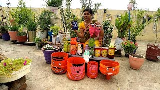 #waste_material #terrace_garden #homemadeplanters.              DIY beautiful planters