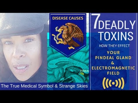 Chemtrails Toxic Strange Skies Effect on the Pineal Gland the True Symbol of Medicine