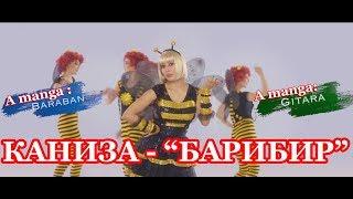 Каниза - Барибир    Kaniza - Baribir