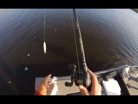 SAKURA Naja 145 F Pike Topwater Bites