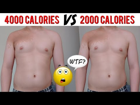 You Are Not Eating Enough For Fat Loss | Gabriel Sey
