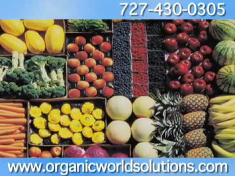Organic World Solutions Corp.