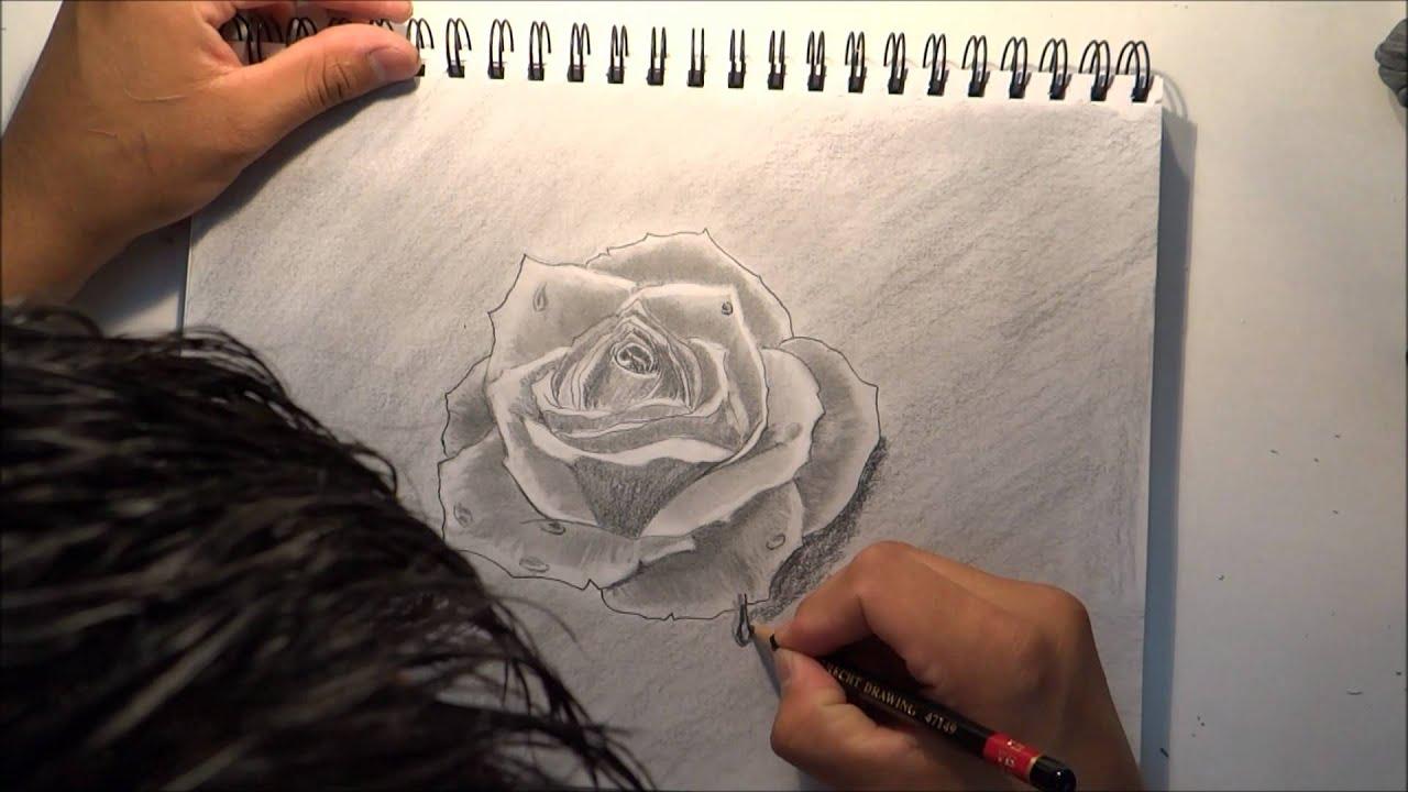 Com dibujar una rosa youtube - Como secar una rosa ...