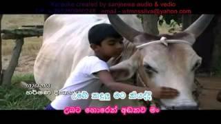 Sinhala karaoke song (without voice )