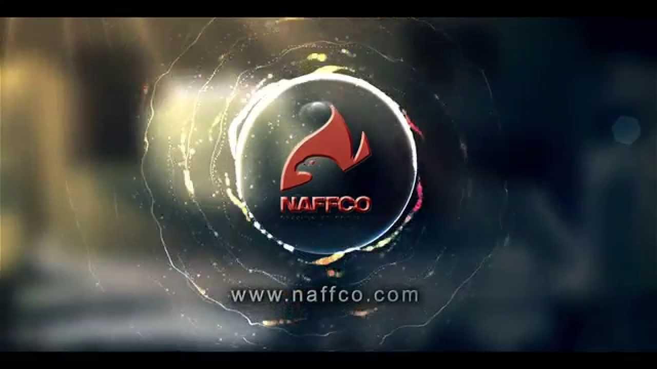 Lincoln Martin NAFFCO 13