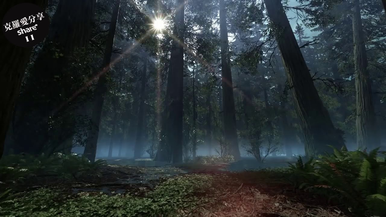 耳鳴治療 - 耳鳴消失 - それは自然の生きた美しさです 大自然 ...