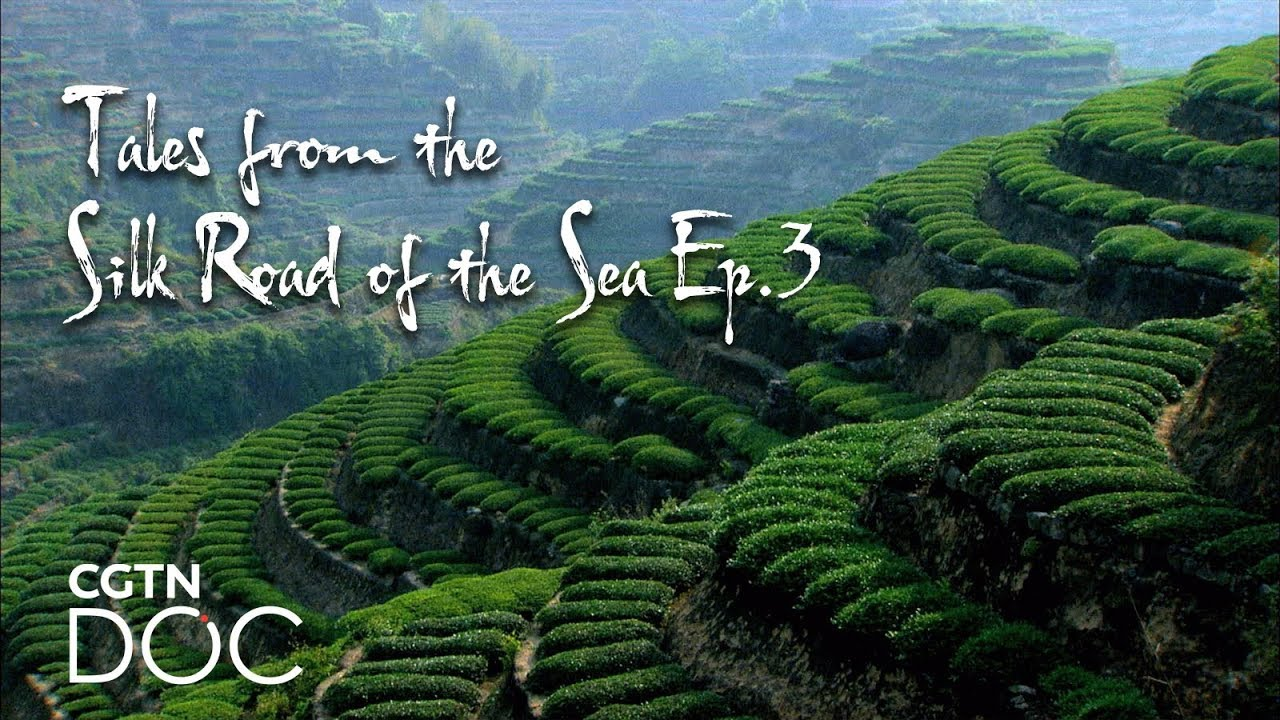 Download Tales from the Silk Road of the Sea Ep.3: Original Hometown