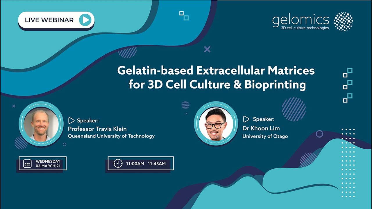 Webinar recording: Gelatin-based Extracellular Matrices for 3D Cell Culture & Bioprinting