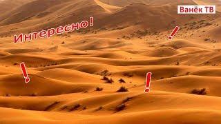 Природная зона пустыня. Интересно!