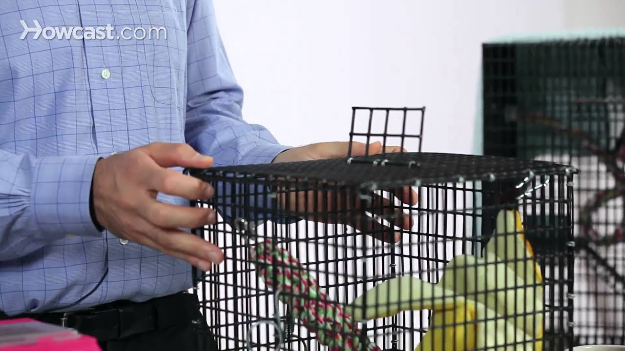 how to make a sugar glider cage