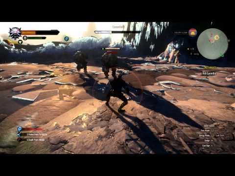 Witcher 3 - Caranthir Boss Fight