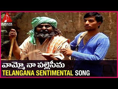 Telangana Emotional songs | Vamoo Na Palle Seema Sentimental Song | Amulya Audios And videos