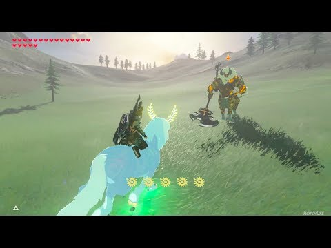 Zelda Breath of the Wild: Lord of Mountain meets Gold Lynel