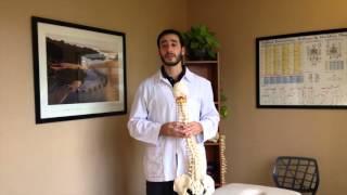 Lideres en Quiropraxia - Tratamiento Quiropractico - la Escoliosis