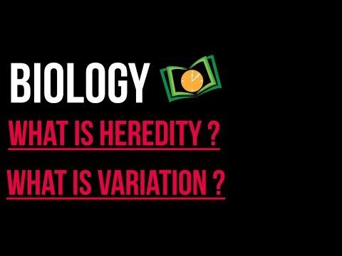 Neet Biology   Genetic Basis Of Inheritance   What is heredity & Variation