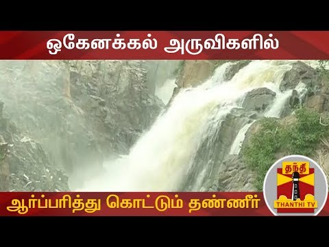 #Hogenakkal #HogenakkalFalls #CauveryWater ஒகேனக்கல் அருவிகளில் ஆர்ப்பரித்து கொட்டும் தண்ணீர் | Hogenakkal Falls | Thanthi TV  Uploaded on 23/07/2019 :   Thanthi TV is a News Channel in Tamil Language, based in Chennai, catering to Tamil community spread around the world.  We are available on all DTH platforms in Indian Region. Our official web site is http://www.thanthitv.com/ and available as mobile applications in Play store and i Store.   The brand Thanthi has a rich tradition in Tamil community. Dina Thanthi is a reputed daily Tamil newspaper in Tamil society. Founded by S. P. Adithanar, a lawyer trained in Britain and practiced in Singapore, with its first edition from Madurai in 1942.  So catch all the live action @ Thanthi TV and write your views to feedback@dttv.in.  Catch us LIVE @ http://www.thanthitv.com/ Follow us on - Facebook @ https://www.facebook.com/ThanthiTV Follow us on - Twitter @ https://twitter.com/thanthitv