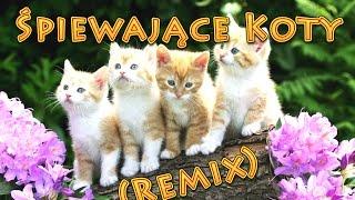 Śpiewające Koty & Twenty One Pilots - Heathens (Ozyrys remix)