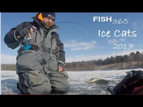 Ice fishing for nebraska channel catfish youtube for Ice fishing for catfish
