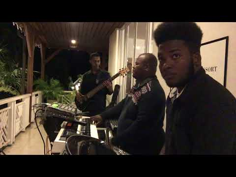 House Of The Rising Sun -The Animals - Steel Pan/ Drum - Eclectic Band