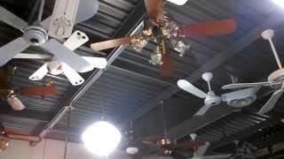 UPDATED Video Tour of the Fanimation Fan Museum, Upper Level (Part 2) FAN DEMONSTRATIONS