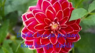 Video bunga dahlia voc.ikke nurzanah download MP3, 3GP, MP4, WEBM, AVI, FLV Juni 2018