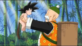 Dragon Ball the beginning