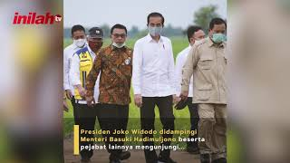 Presiden Jokowi Tinjau Lahan Potensial Food Estate di Kalteng - inilah.com