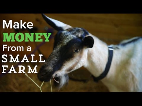 How to Make Money on a Small Farm