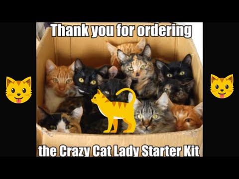 Cute And Funny Cat Memes Youtube