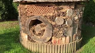 Nieżyn hotel dla owadow