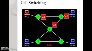 Types of switching (packet switching, cell switching) techniques