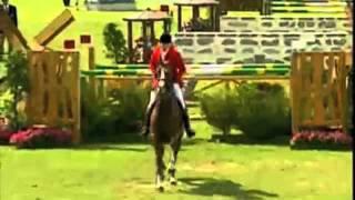 Horses- You make me feel good