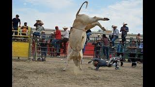 CHEQUEN LA CALIDAD DE TOROS DE REPAROS!!...