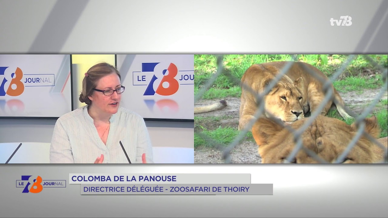 thoiry-50-ans-dhistoire-celebre-week-end