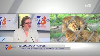 Thoiry : 50 ans d'histoire célébré ce week-end