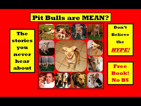 Positive pit bull FREE BOOK - no gimmick. It's FREE - 동영상