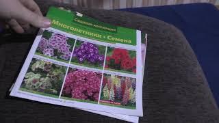 Проведываем Женю в больнице/ Как приучить детей к обязанностям по дому/Каталог цветов