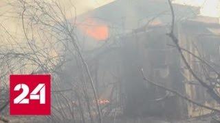 Израиль обратился за помощью в тушении леса к России - Россия 24