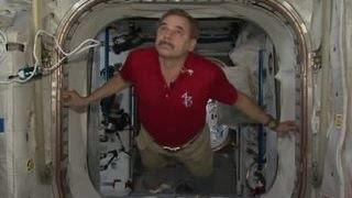 Научные эксперименты на МКС можно увидеть в реалити-шоу