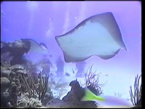 Nassau Undersea Adventures 1990
