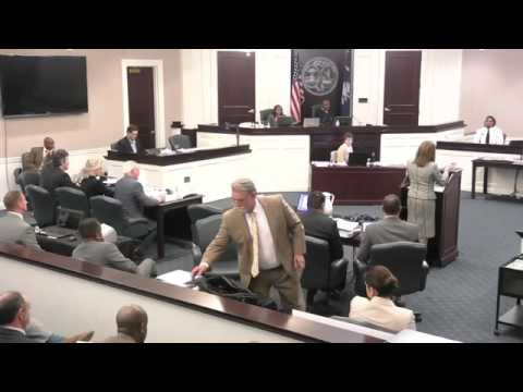 Feidin Santana Full Testimony - Trial of Michael Slager for Walter Scott Murder