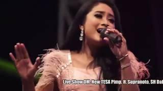 Download Lagu Anisa rahma - 14 malam - new tesa mp3