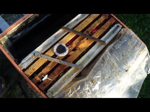 Три рамки в зиму, сохранение единицы на пасике