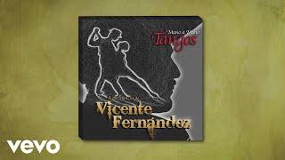 Vicente Fernández - Sus Ojos Se Cerraron (Cover Audio)