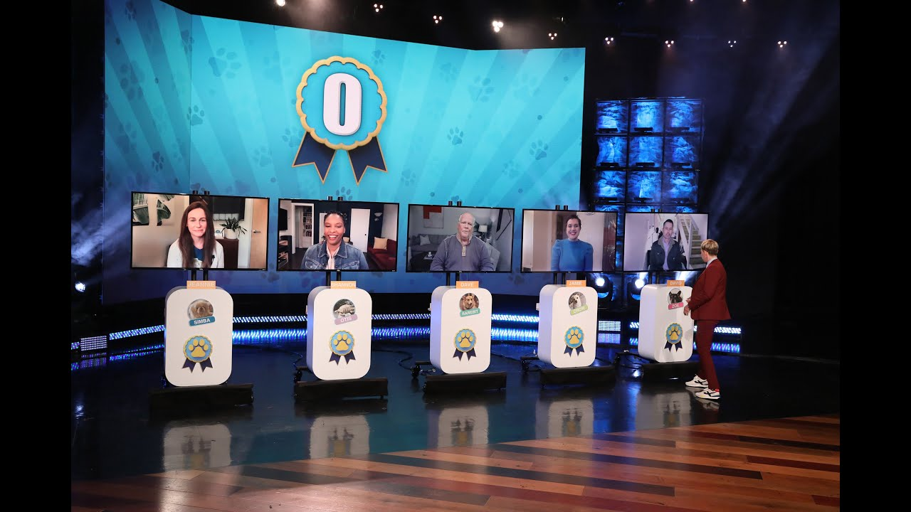 Ellen Guesses Which Pets Belong to Staff Members