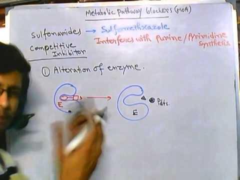 Antibiotic resistance against sulfonamides