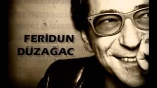 Feridun Düzağaç-Alev Alev