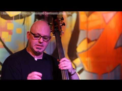 Steve Millhouse With EWS Tri-logic Bass Preamp 2 & Upright Bass